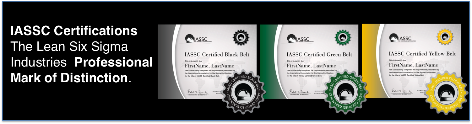 Six Sigma Black Belt Certification Online Msi Certified Mandegarfo